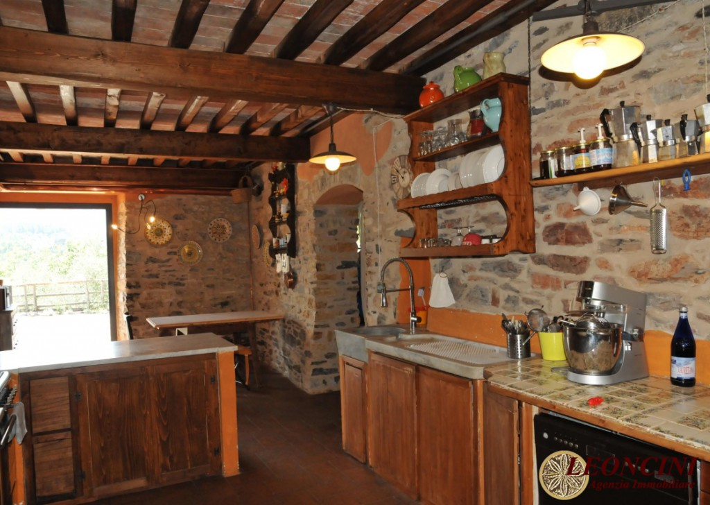 Sale Cottages and Stonehouses Fivizzano - P103 farmhouse renovated Locality