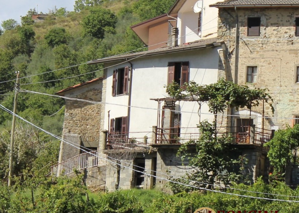 Sale Stonehouses in Historic Center Bagnone - House in the village Locality