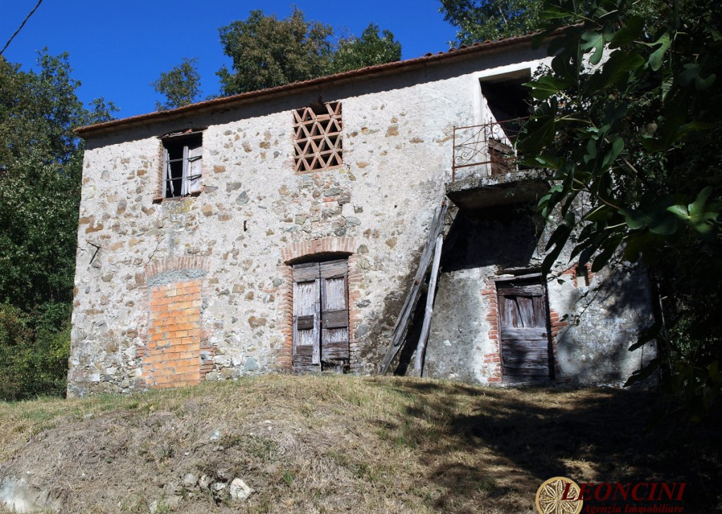Sale Cottages and Stonehouses Villafranca in Lunigiana - A391 Rustic house with land Locality