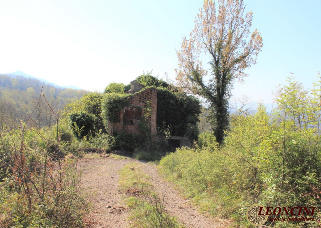 Sale Cottages and Stonehouses Villafranca in Lunigiana - P118 Stone house surrounded by greenery Locality