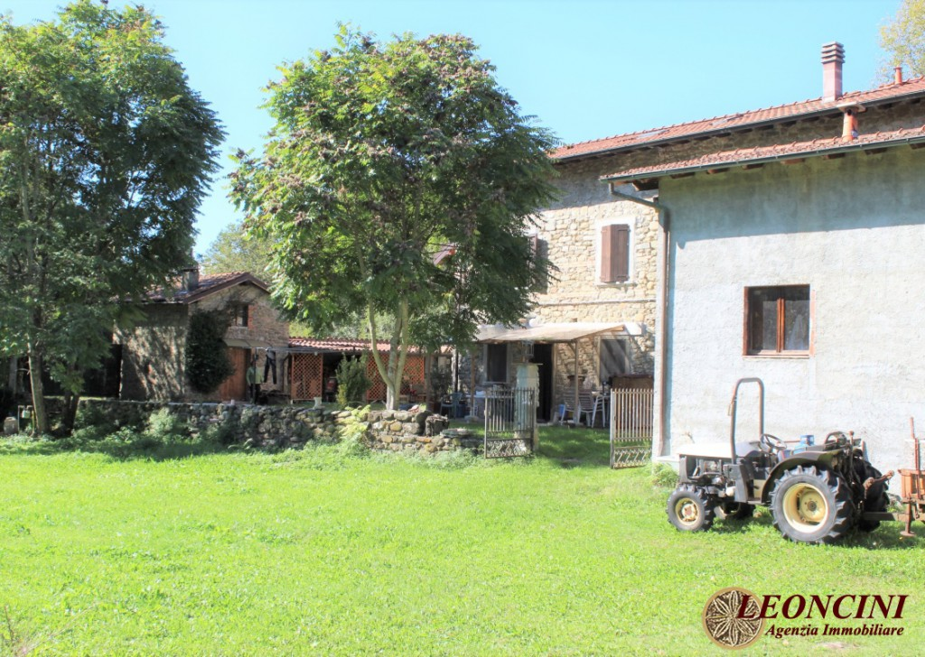 Sale Cottages and Stonehouses Villafranca in Lunigiana - farmhouse with pool Locality